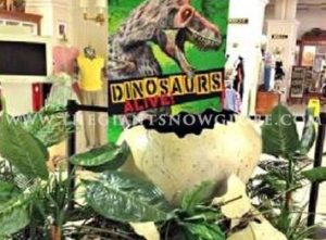Dinosaurs Giant Eggs