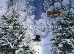 Snow Globe Sochi