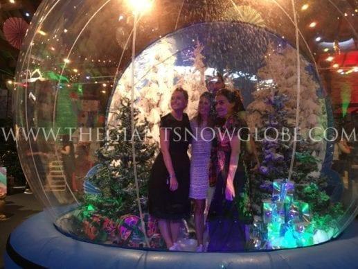 Giant Snow Globe 10×10